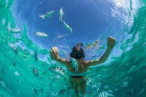 Mauritius-Snorkelling.jpg