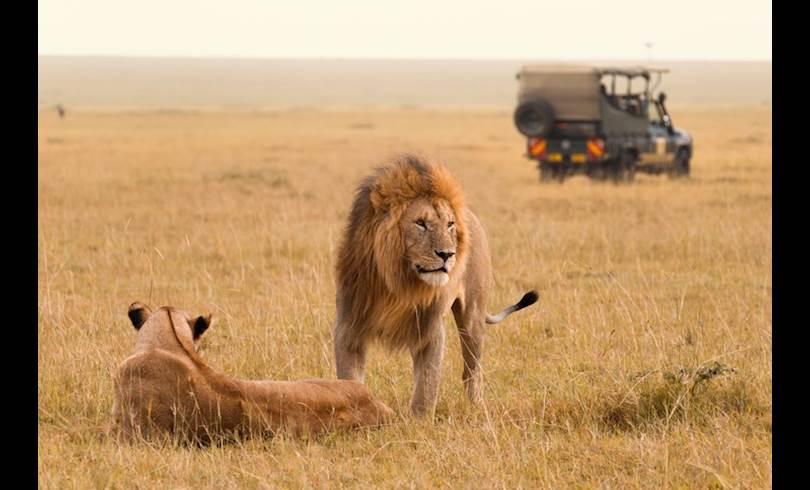 Kenya3-Kenya.jpg