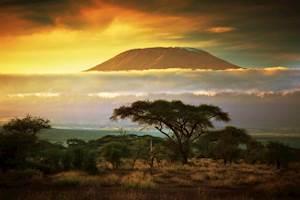 Kenya-Kenya.jpg
