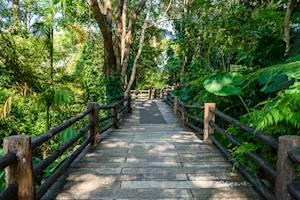 Mae_Fah_Luang_Garden_Chiang_Rai.jpg