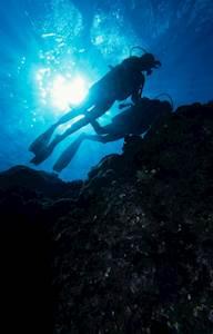 Mauritius-Diving.jpg