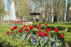CulturalTip-Zagreb.jpg