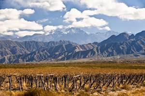 Chile-VY1.jpg