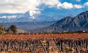 WFP1-Chile.jpg
