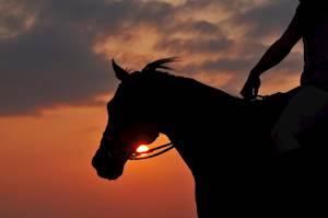 HorseRidingSafari-Kenya.jpg