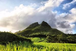 Lepouce-Mauritius.jpg