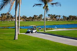 GolfB1.jpg