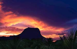 LMB1-Mauritius1.jpg